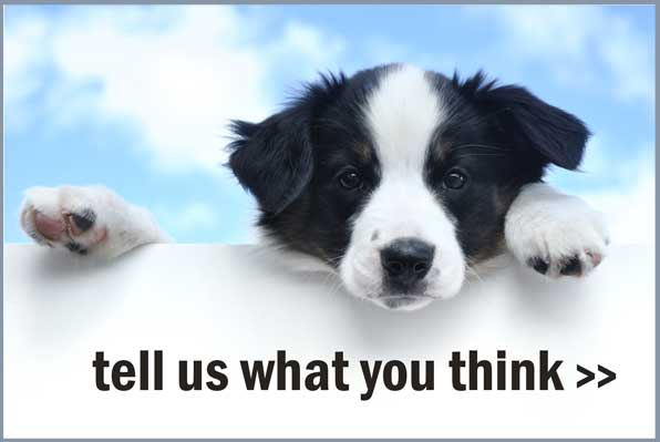 Tell us what you think about Perfect Pets